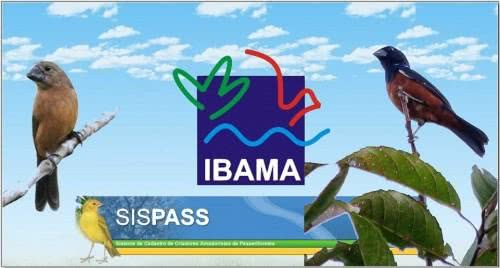 sispass-ibama12